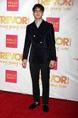 LOS ANGELES - DEC 7:  Darren Criss at the