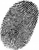 Perfect Ink Fingerprint
