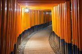 picture of inari  - Kyoto - JPG