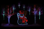 Illuminated Christmas Trees And Snowman