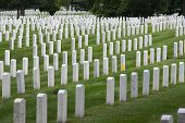 picture of arlington cemetery  - Arlington National Cemetery Virginia United States - JPG