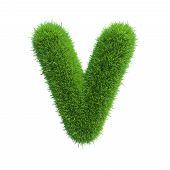 Letter v of green grass