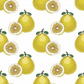 Seamless Pattern With Pomelos
