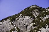 stock photo of avalanche  - Birds flying over a cliff on Avalanche mountain in the Adirondacks New York - JPG