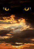 pic of werewolf hunter  - Dark series  - JPG