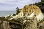 picture of vilamoura  - Algarve scenario footpatch cliff acess at Falesia beach - JPG