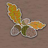 pic of acorn  - Vector illustration of colorful acorns - JPG