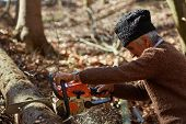 image of man chainsaw  - Senior caucasian man woodcutter cutting down trees with chainsaw - JPG