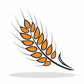 Orange abstract wheat