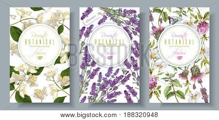 poster of Vector vertical wild flowers and herbs banners. Design for herbal tea, natural cosmetics, perfume, health care products, aromatherapy. With place for text. Can be used as wedding, summer background