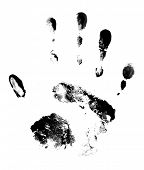 Hand print on white background