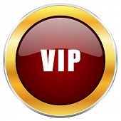 Vip red web icon with golden border isolated on white background. Round glossy button. poster