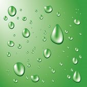 green water drops on a green background
