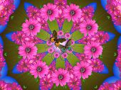 picture of woodstock  - digitally created mandala very suitable as background - JPG