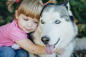 Cute Little Girl Hugging A Husky poster