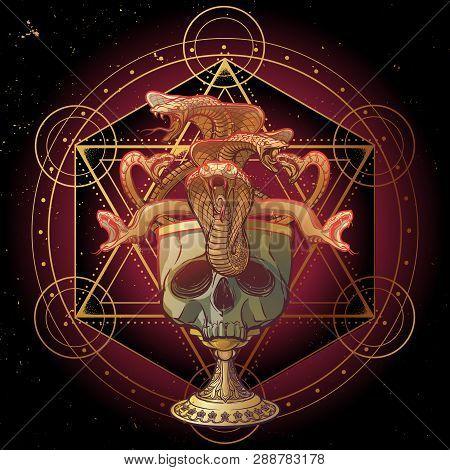 Skull Made Goblet Filled With