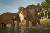 KO CHANG, TRAT/Tailândia - 22 de dezembro: Banho elefantes no mar em 22 de dezembro de 2011, em Ko Chan