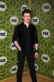 LOS ANGELES - JAN 8:  Chris Colfer arrives at the Fox TCA Party - Winter 2012 at Castle Green on Jan