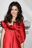 LOS ANGELES - JAN 10:  Erica Dasher arrives at the ABC TCA Party Winter 2012 at Langham Huntington H