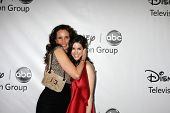 LOS ANGELES - JAN 10:  Andie McDowell, Erica Dasher arrives at the ABC TCA Party Winter 2012 at Lang