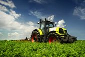picture of sugar industry  - The tractor - JPG