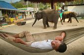 KO CHANG, THAILAND - DECEMBER 22: Guard in a training center for elephants on Dec 22, 2011 on Ko Chang, Thailand. Nowadays development of the tourism industry found a new use for elephants in Thailand