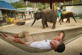 KO CHANG, Tailândia - 22 de dezembro: Guarda em um centro de treinamento de elefantes em 22 de dezembro de 2011, em Ko Cha