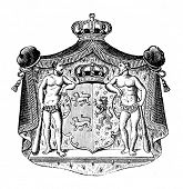 The old coat of arms of Duchy of Braunschweig (Germany). Engraving by Alwin Zschiesche published on