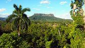 El Yunque Tabletop Mountain Hike Near Baracoa In Cuba, February 2019 poster