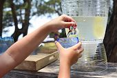 Kid Pouring Lemonade On The Candy Bar By The Sea poster