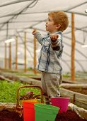 Learning Ecology. Small Boy Learning Ecology In Greenhouse. Learning Ecology While Working With Plan poster