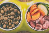 Natural food in a bowl as opposite of dry dogs kibble. poster