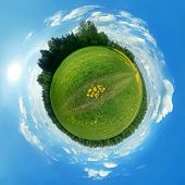 Green Panorama Globe