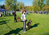 SUMY, UKRAINE - OCTOBER 7: Unidentified participants compete in regional dog show on October 7, 2012 in Sumy, Ukraine. Dog shows are held in Sumy twice a year and are very popular among the locals.