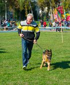 SUMY, UKRAINE - OCTOBER 7: Unidentified participant competes in regional dog show on October 7, 2012 in Sumy, Ukraine. Dog shows are held in Sumy twice a year and are very popular among the locals.