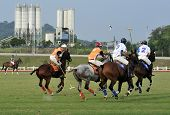 Polo Match Tournament