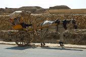 stock photo of hackney  - Egypt Cairo Giza pyramid monument ruin tomb cemetery stone Pharaoh religion road horse fly tourism transport hackney - JPG