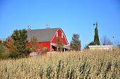 Farm: Red Barn, Blue Skies, Windmill & Corn Field