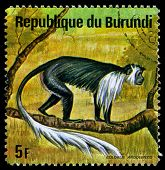 Burundi - Circa 1964: A Stamp Printed In Burundi Shows A Wild Animal, Circa 1964.