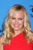 LOS ANGELES - AUG 4:  Malin Akerman arrives at the ABC Summer 2013 TCA Party at the Beverly Hilton H
