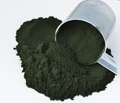 foto of green algae  - Blue - JPG