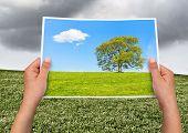 Memorable Picture Rain Vs Sun
