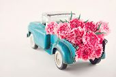 Toy Truck Carrying Pink Carnations