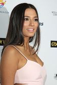LOS ANGELES - JAN 11:  Jessica Gomes at the  2014 G'Day USA Los Angeles Black Tie Gala at JW Marriot