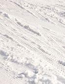 Tire Track In Snow