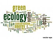 Vector concept or conceptual abstract green ecology and conservation word cloud text on white backgr
