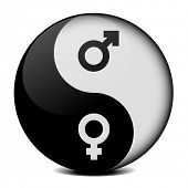 detailed illustration of yin yang symbol with gender icons, symbol for gender equality