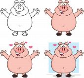 Pig Cartoon Characters 5.  Collection Set