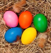 Easter eggs in the natural nest of hay