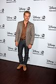 LOS ANGELES - JAN 17:  Adam Campbell at the Disney-ABC Television Group 2014 Winter Press Tour Party